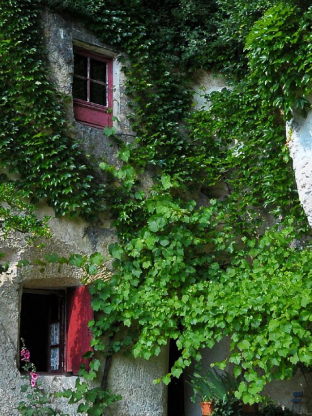La Magnanerie Maison Troglo à Bourré