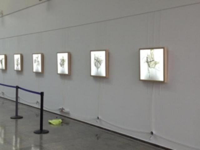 Exposition Cave Merieau Plasticien Pascal Maestri Bell