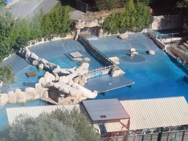 Zoo De Beauval Amenagements (1)