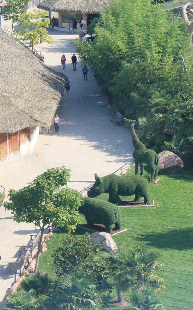 Zoo De Beauval Amenagements (2)