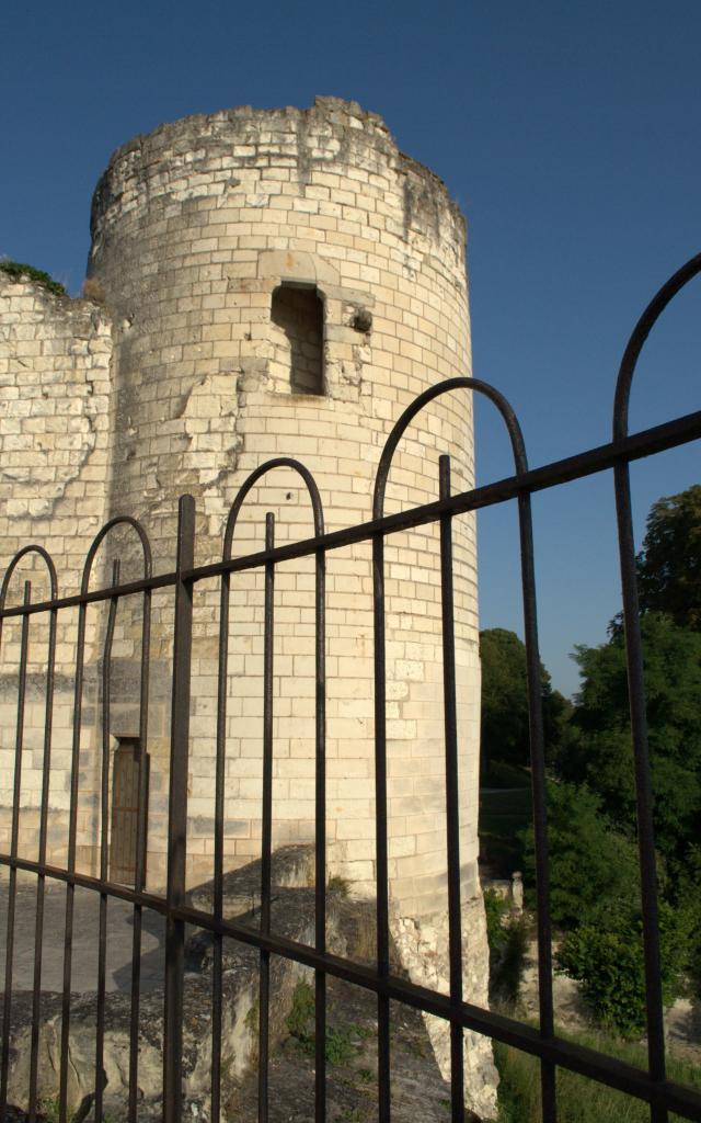 Chateau Saint Aignan Sud Valdeloire Loire (5)