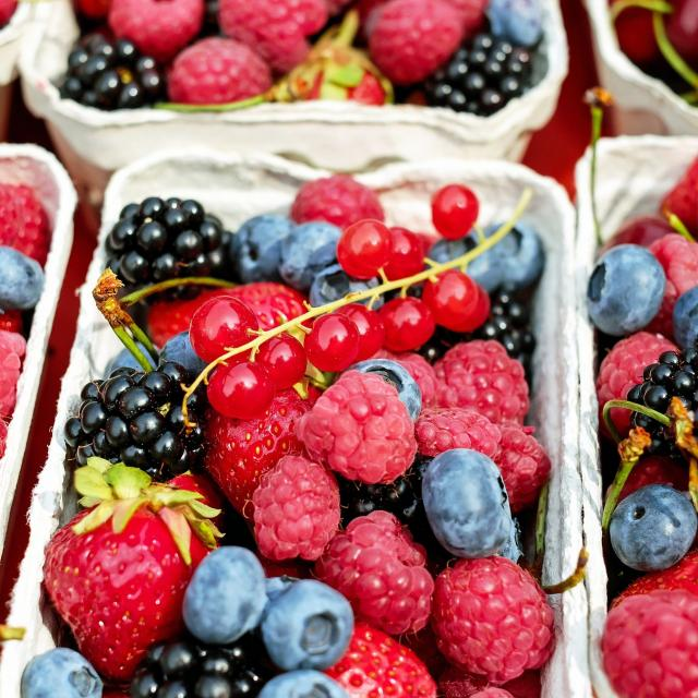 Cueillette Petits Fruits Rouges