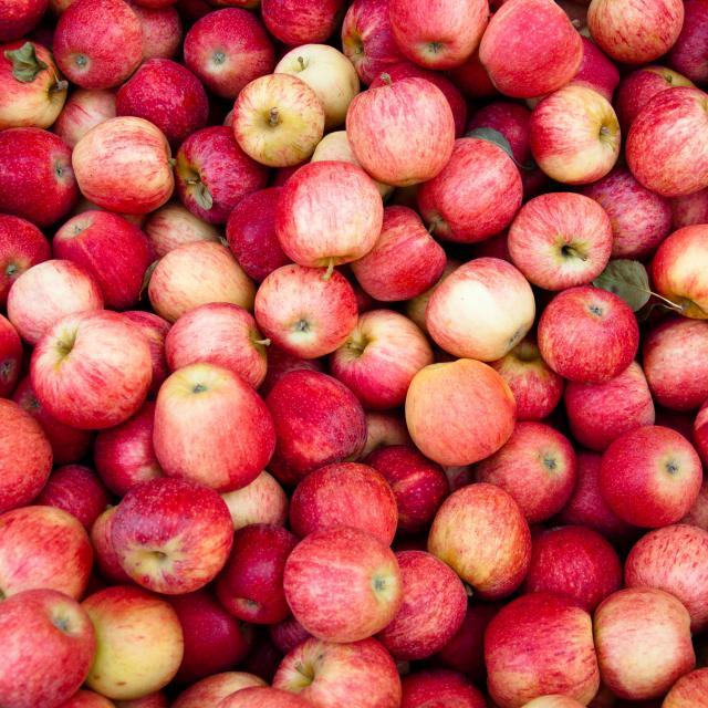 pommes-4.jpg