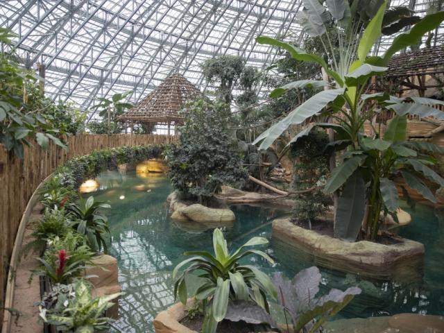 Zoo De Beauval Dome Equatorial Bassin Lamantin